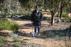 Lady walking a dog